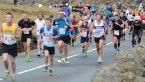 The Snowdonia Marathon and Snowdon Race